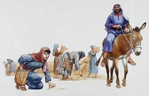 Boaz sees Ruth